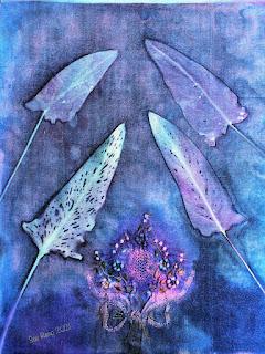 Sue Reno_wet cyanotype_image 919