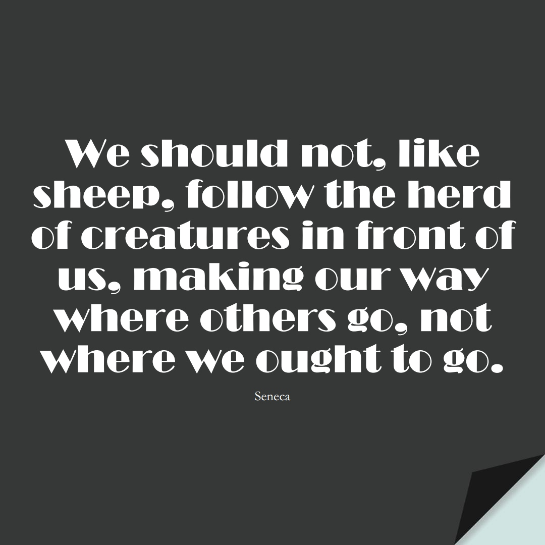 We should not, like sheep, follow the herd of creatures in front of us, making our way where others go, not where we ought to go. (Seneca);  #StoicQuotes