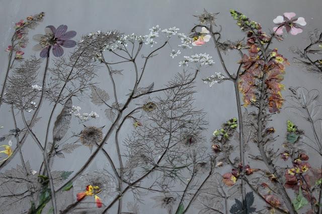 Botanical Art, Rachel Dein, Tactile Studio, Plaster Casting
