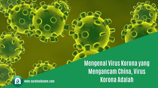 Virus korona adalah