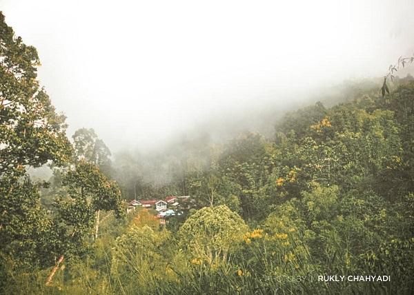 Pemandangan Kabut Tebal menutupi perkambungan tepat dibawa puncak kamba