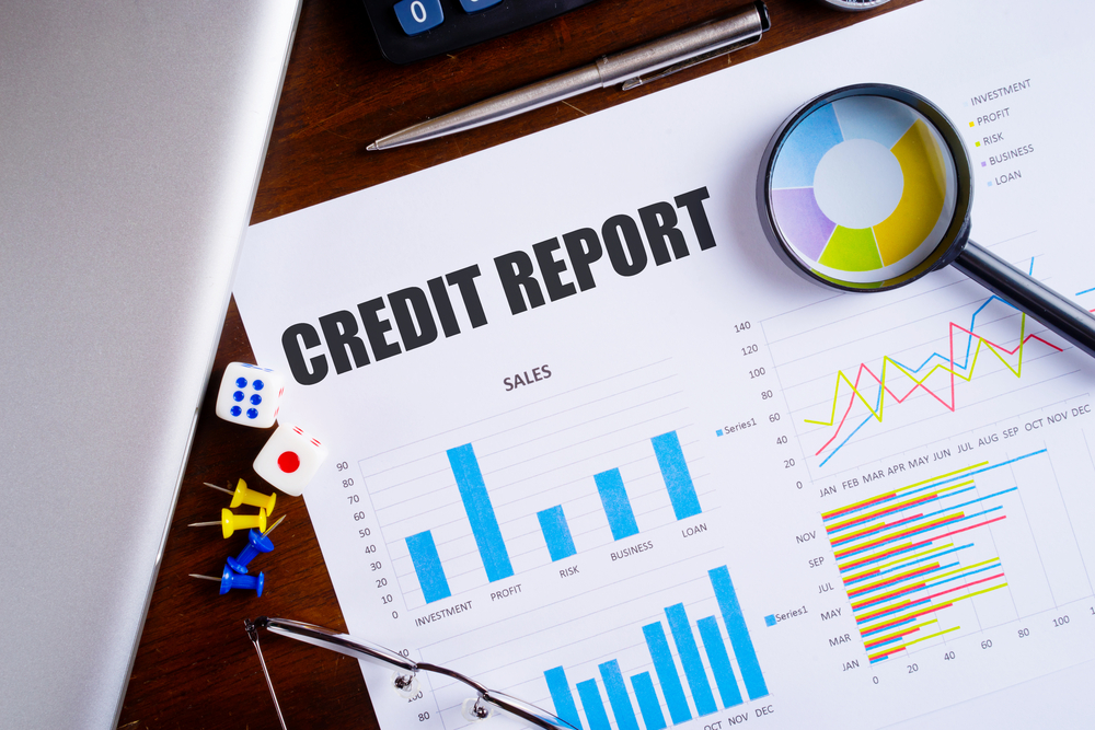 Which Details Are Reflected In Your Credit Report?