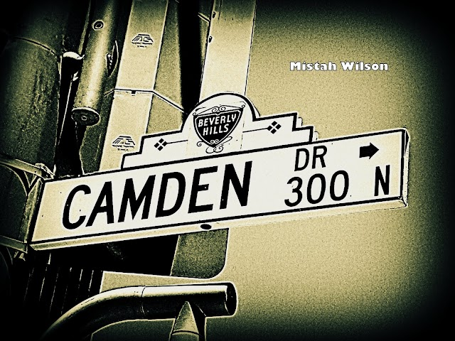 Camden Drive, Beverly Hills, California by Mistah Wilson