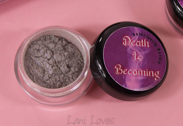 Notoriously Morbid Why Am I In The Morgue? Eyeshadow Swatches & Review