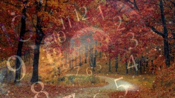 Нумерологический прогноз: какие дни в октябре 2020 года будут удачными