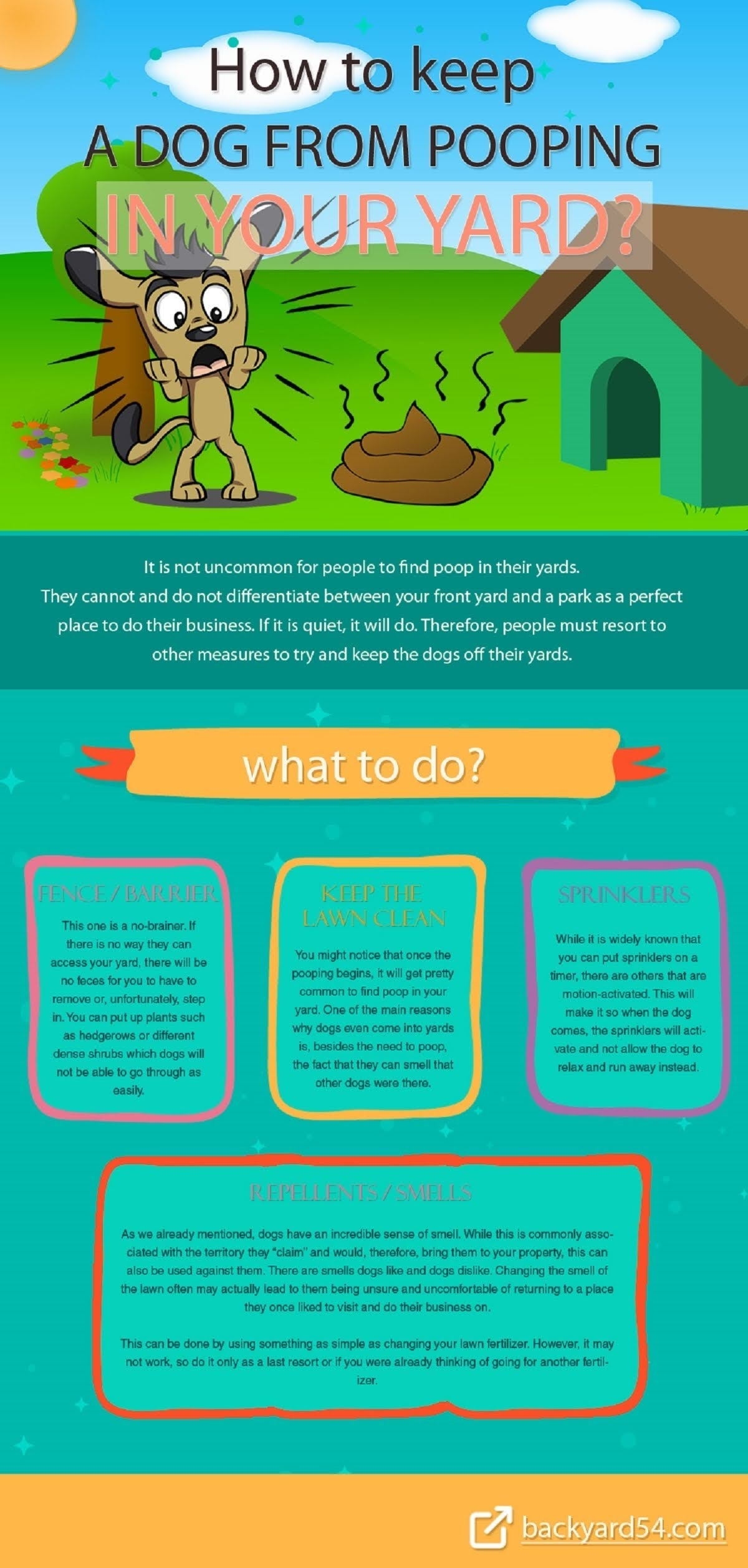 How to keep a dog from pooping in your yard? #infographic