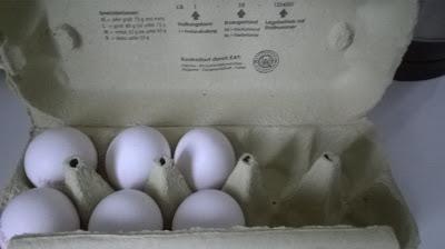 Ein Eierkarton mit 6 Eiern