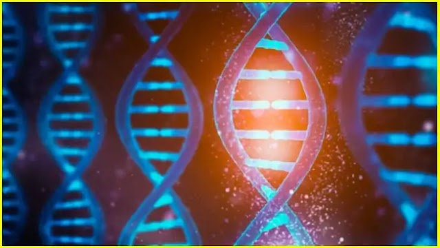 NVIDIA and Harvard use Artificial Intelligence for fast and inexpensive genome analysis