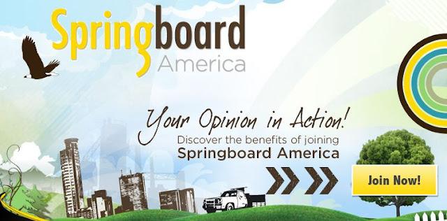 Kiếm tiền khảo sát trên Springboard America?