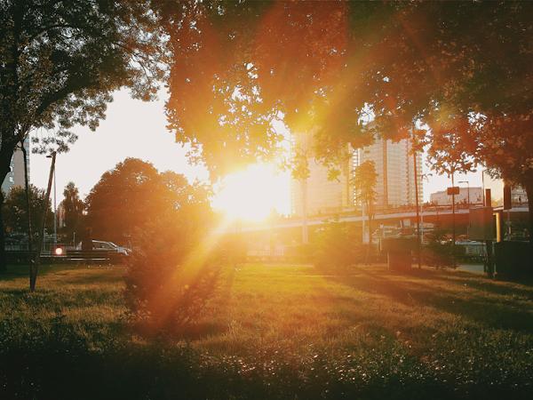 INSTAoctober: Октомври в снимки от Instagram'15