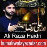 https://www.humaliwalyazadar.com/2018/09/ali-raza-haidri-nohay-2019.html