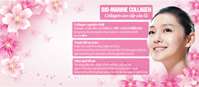 cover%2Bcollagen-01.png