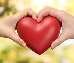 Ketegaran Cinta