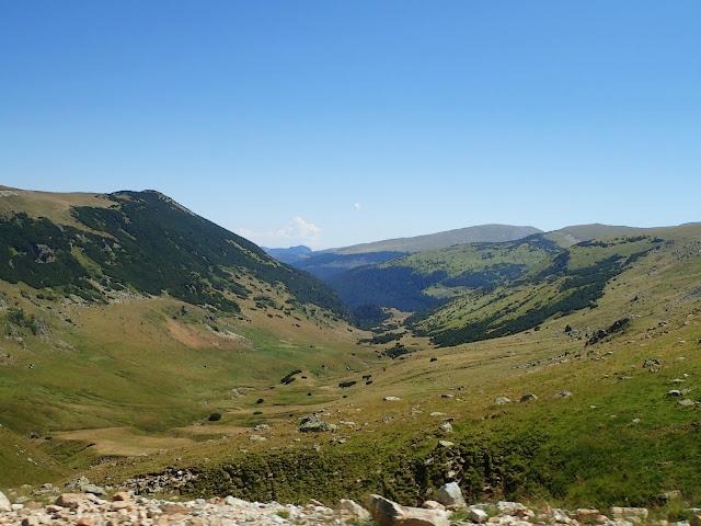 Dolina widoczna z Transalpiny
