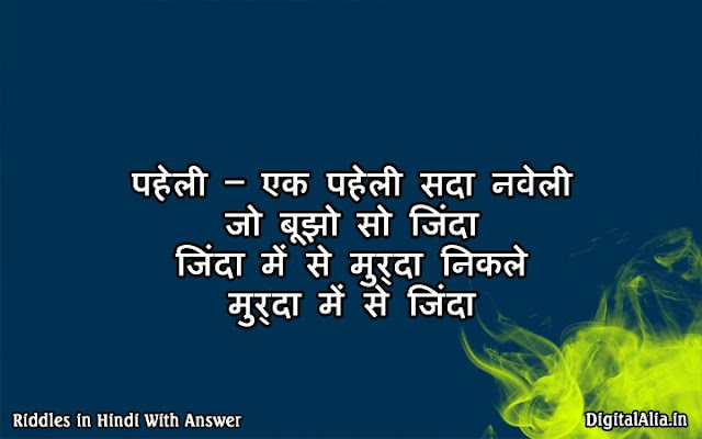 riddles in hindi for kids