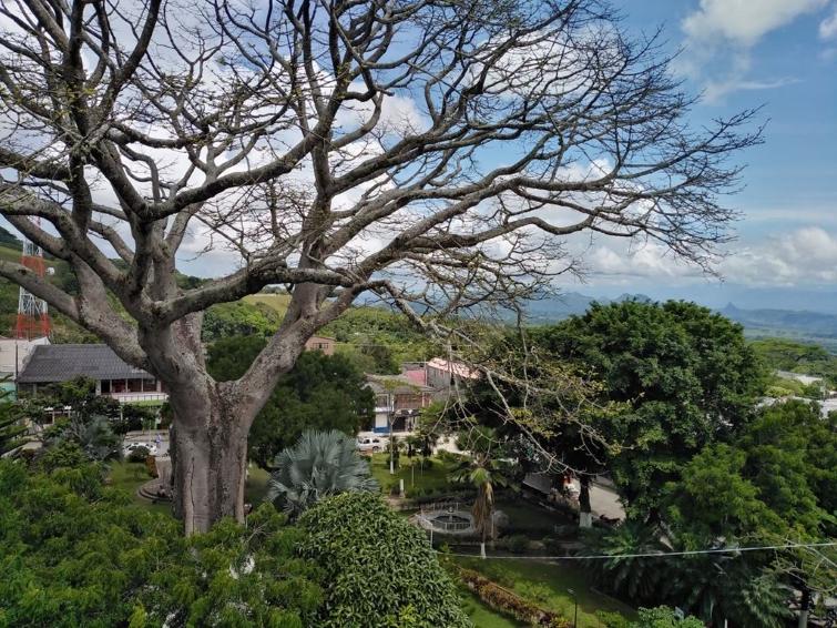 Victoria es un municipio colombiano ubicado en el oriente del departamento de Caldas