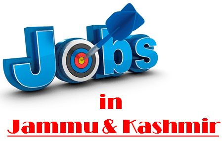 RCF Limited Various Vacancy Online Form 2020