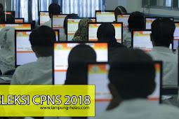 Daftar Lengkap Kuota dan Formasi CPNS 2018 Lampung