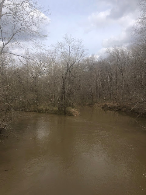 The muddy convergence of Dutchman Creek and the Cache River.