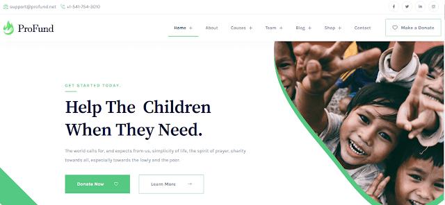 Nonprofit Fundraising & Charity WordPress Themes With Donation System   Profund