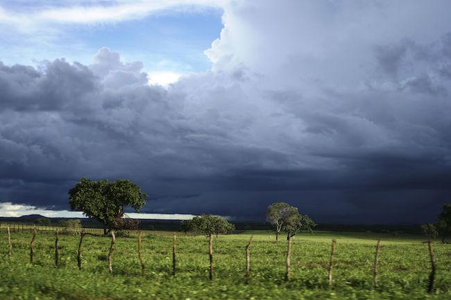 Meteorologia prevê tempo chuvoso para a primeira semana do mês de fevereiro em Malhada de Pedras e região