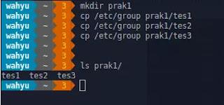 mkdir prak1
