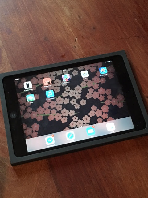 iPad mini 2 in Logitech BLOK case