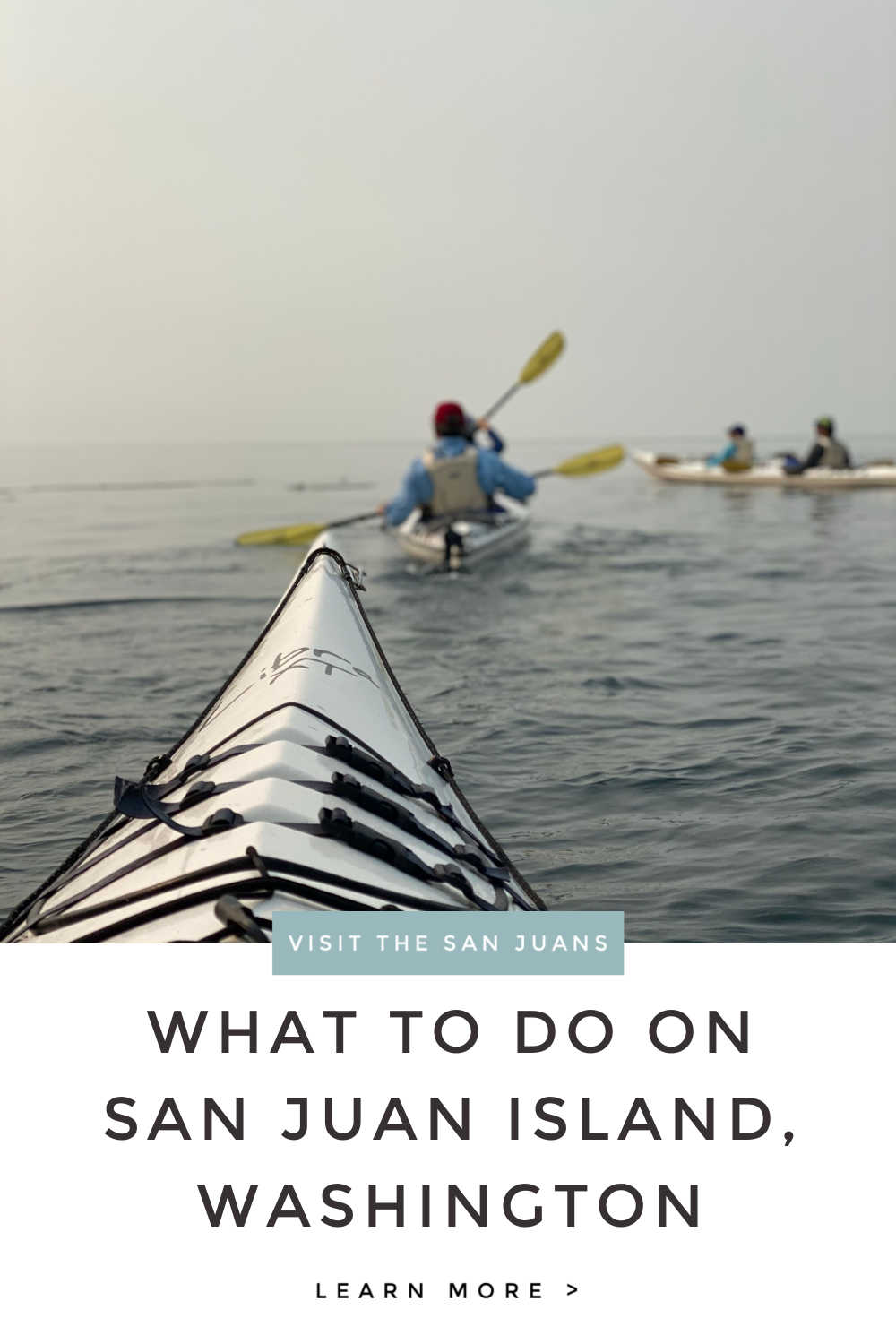 WHAT TO DO IN SAN JUANS