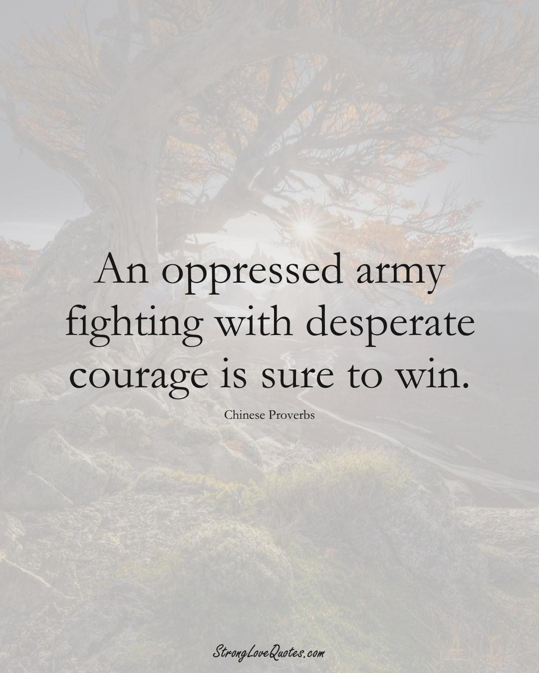 An oppressed army fighting with desperate courage is sure to win. (Chinese Sayings);  #AsianSayings