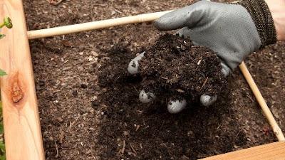 Kandungan, Jenis dan Proses Pembuatan Pupuk Organik