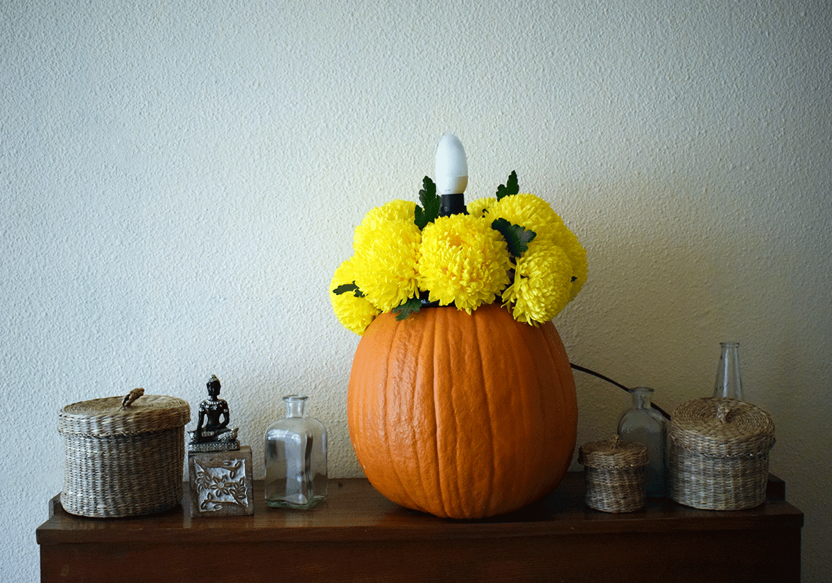 Cum sa faci un aranjament floral de toamna cu dovleac si crizanteme - DIY - Circul magic