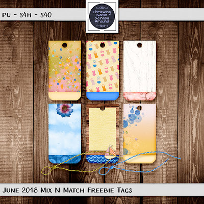 June 2019 Mix N Match from TSSA