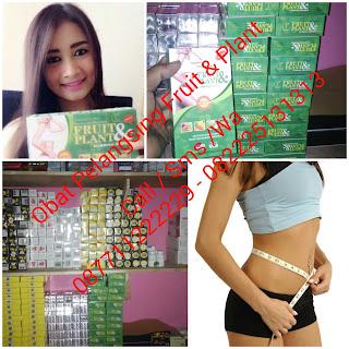 http://www.afongcenter.com/2015/02/obat-pelangsing-badan-fruit-and-plant.html