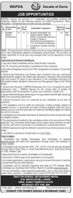 Govt Wapda Jobs 2021-New Jobs-Today New Jobs 2021