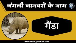 rhinoceros animal name in hindi