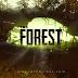 تحميل لعبة The Forest للكمبيوتر مجانا من ميديا فاير
