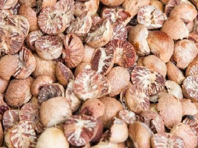 Dry Fruits Name Areca nut