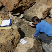 В Альпах нашли ящик с мукой возрастом 4 тысячи лет