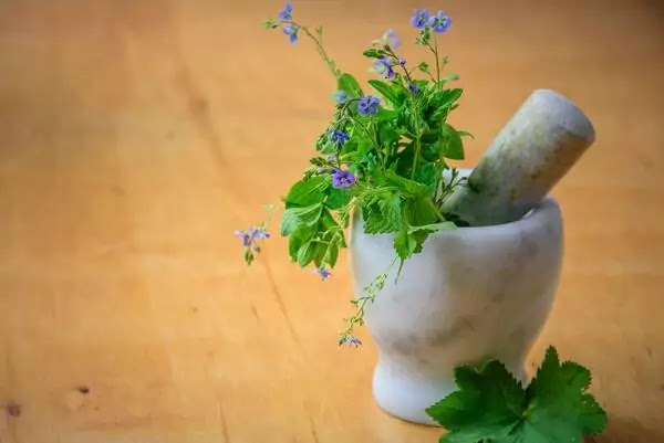 Herbal Medicines   Avoid Drug Poisoning