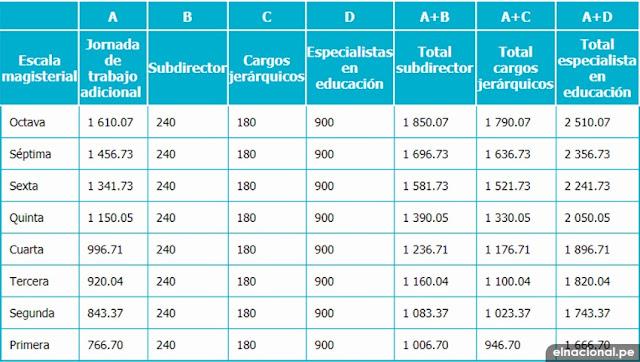 RIM, Subdirector, cargos jerárquicos y especialista en educación