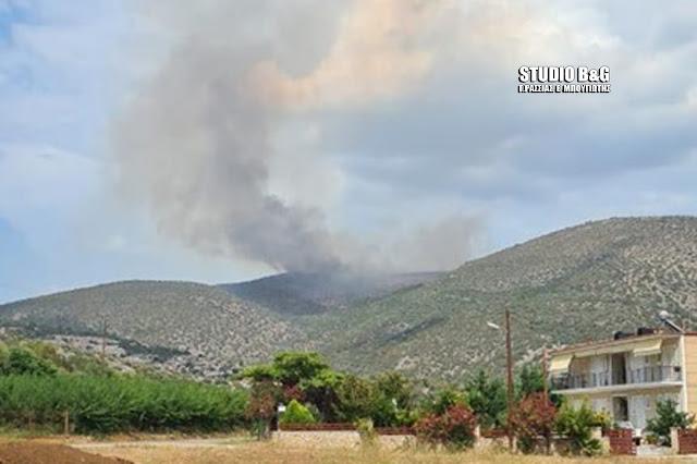 Πυρκαγιά στην Κάντια Αργολίδας - Ρίψεις νερού από πυροσβεστικό ελικόπτερο