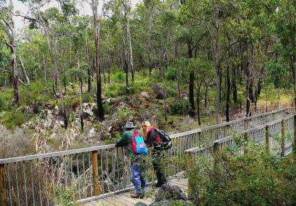 Hiking in Serpentine National Park