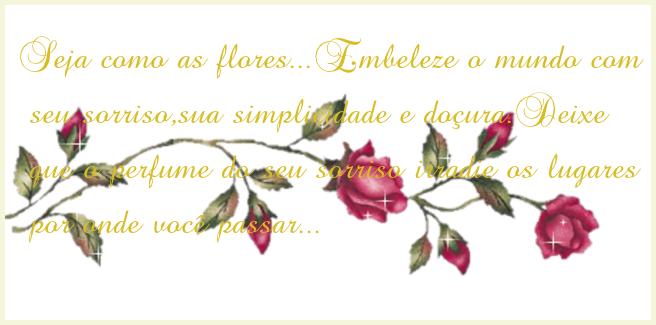 Boa Noite Amiga: Adoro Flores: Boa Noite Amiga