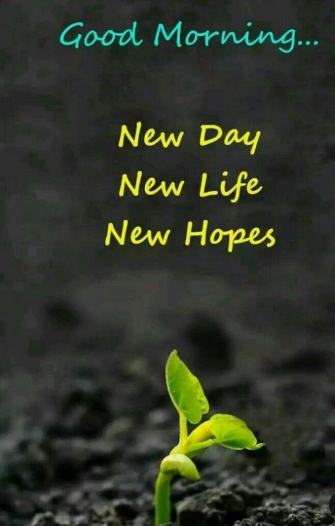 Good Morning Hope quotes Image