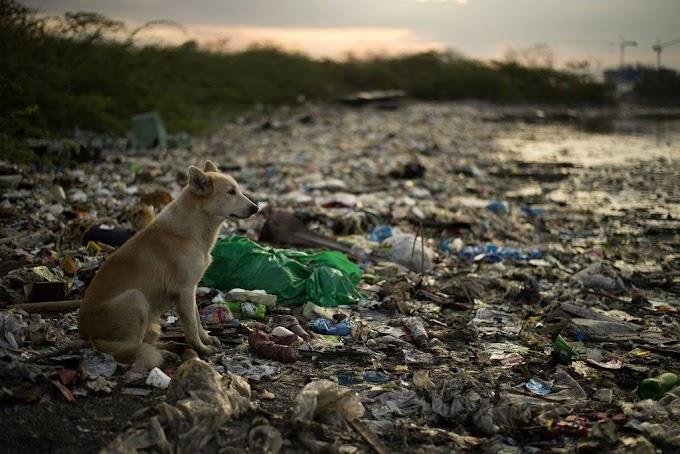 Colômbia proíbe a entrada de plásticos em seus parques nacionais