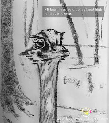 Emu-Fonda'sAnimalPhotoChallenge-HuesnShades