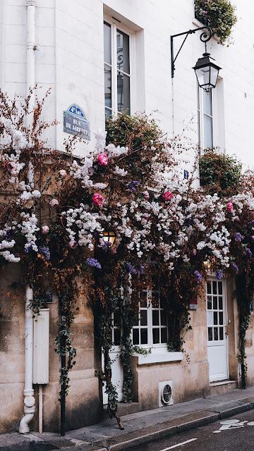 Free image house, building, shrubs, flowers, plants, decoration
