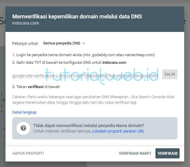 Contoh Memverifikasi Kepemilikan Domain Melalui Data DNS