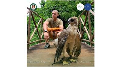 Burung Rajawaji Papua Terbesar Bisa Dilihat di Jakarta
