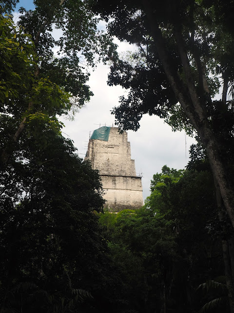 Temple in the jungle at Tikal, Guatemala